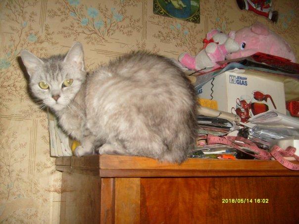 http://cs210.vkontakte.ru/u3632956/7495018/x_f8981860.jpg